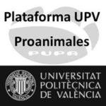 Asociación Animalista PUPA de la UPV